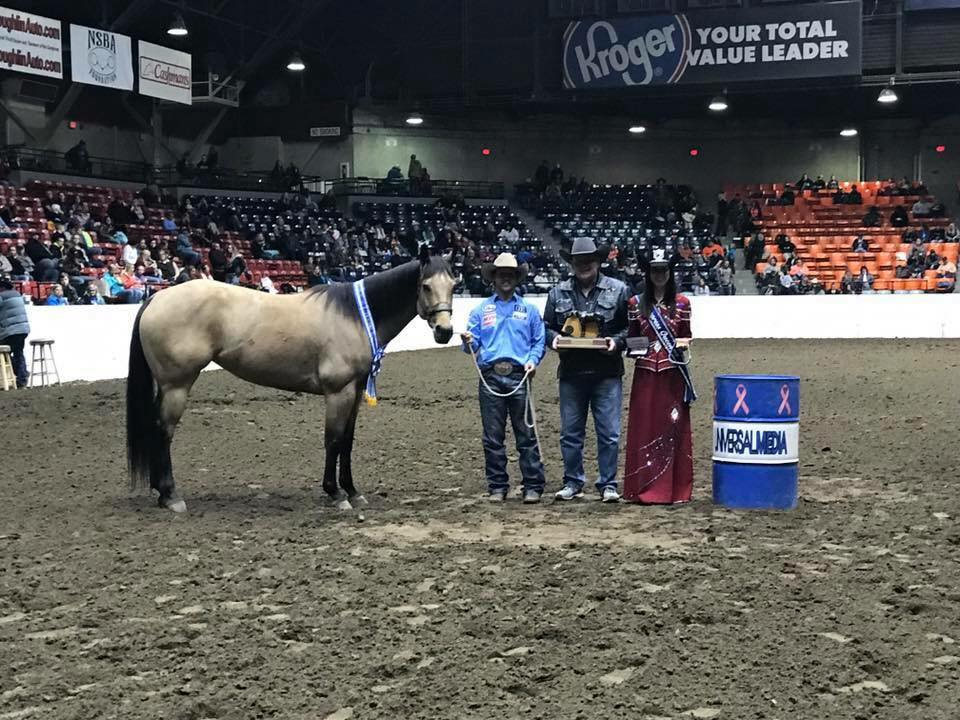 #GuysDashingJet owned by Cathy Geary by #FrenchmansGuy is the All American Quarter Horse Congress Jr. Barrel Racing Champion!