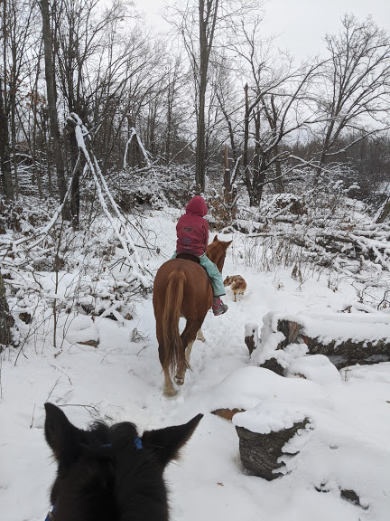 Socks leading the trail ride!