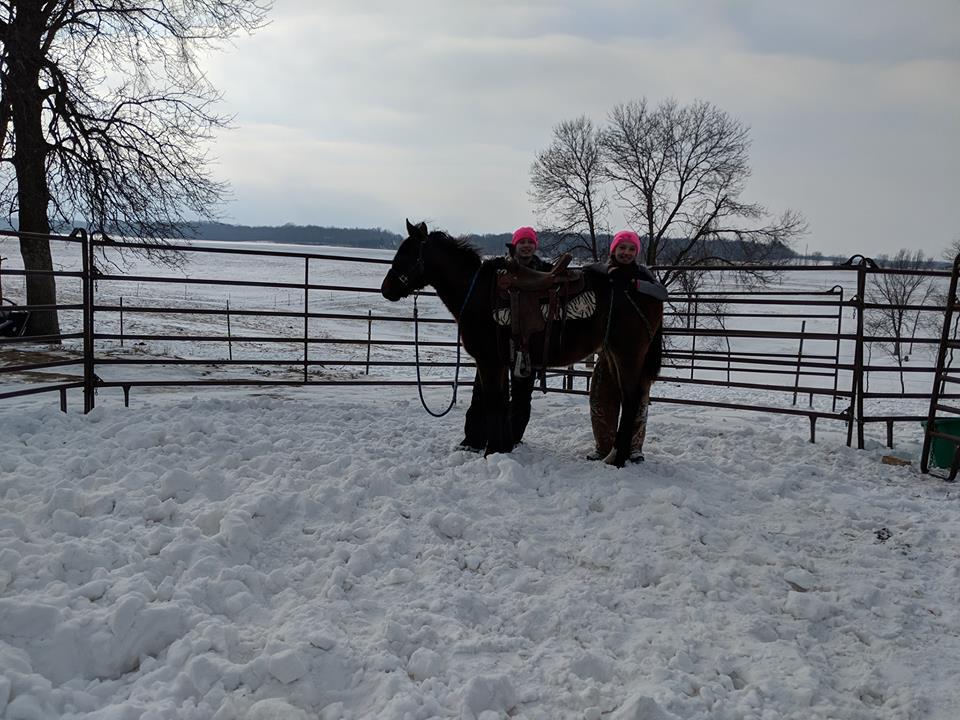 Sparina 1st time saddled!