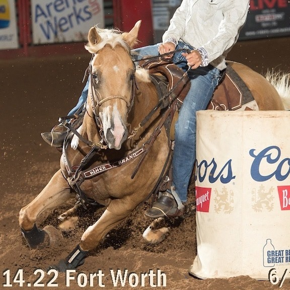 Louie for the win at the Fort Worth Stock Yards Rodeo June 28, 2019  14.22