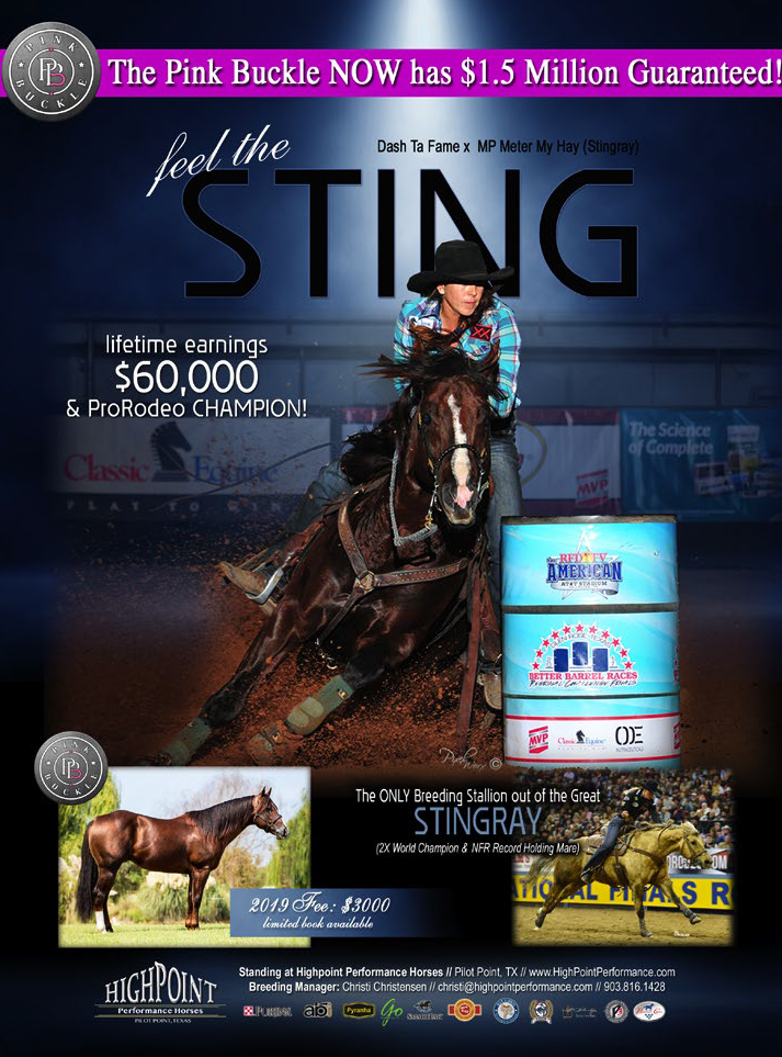 Feel The Sting Lifetime Earnigns $60,000 and Pro Rodeo Champion  Dasht Ta Fame x MP Meter My Hay aka Stingray.  2019 Fee $3,000 Limited Bookings Available