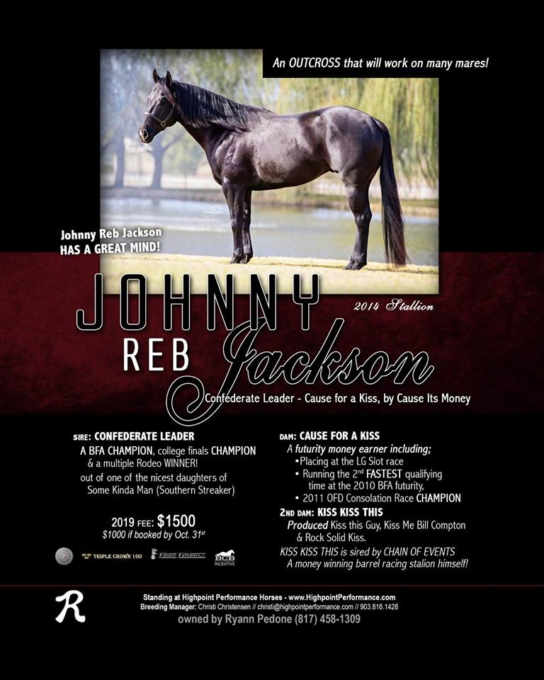 Do you need an outcross? Johnny Reb Jackson is an excellent BLACK stallion to consider! I will be campaigning him in 2019!
