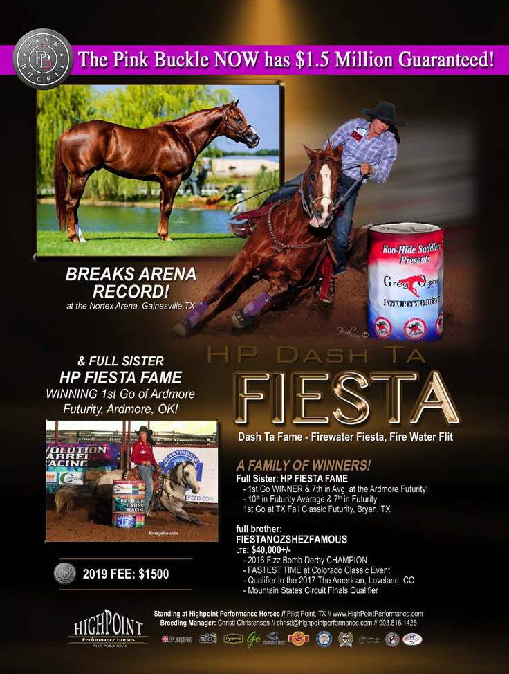 HP Dash Ta Fiesta by Dash Ta Fame Out of Firewater Fiesta by Firewater Flit Arena Record Breaker at Nortext Arena Standing at High Point Performance Horses 2019 Fee $1500