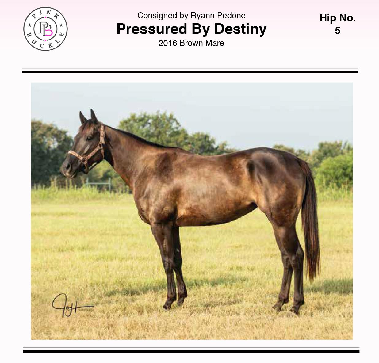Pressured By Destiny