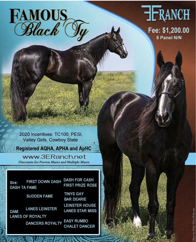 FAMOUS BLACK TY
