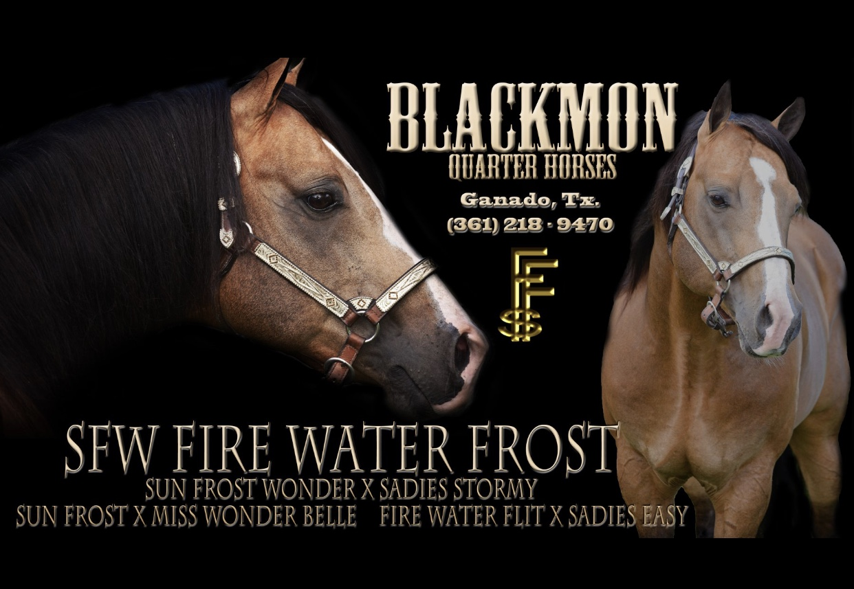 SFW FIREWATER FROST