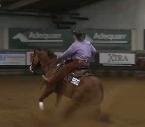 Russ Ratkowski & GH Cromed Mercedes mark a 218.5 for a 3rd place finish in the NAAC Novice Horse Open!