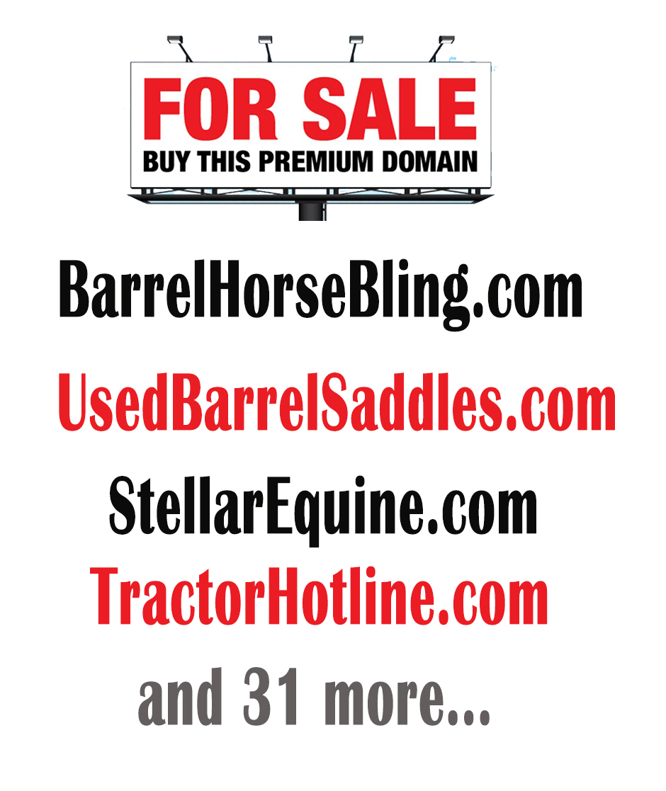 BarrelHorseBling.com, StellarEquine.com and other equine and not related Premium Domain Names for Sale.  All offers considered!  Custom website development available.