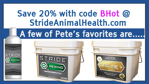 WWP Northcrest Arena Fast Five sponsored by StrideAnimalHealth.com. Use code BHot to save 20% on any and all online orders from Stride Animal Health thru 7/31/19.