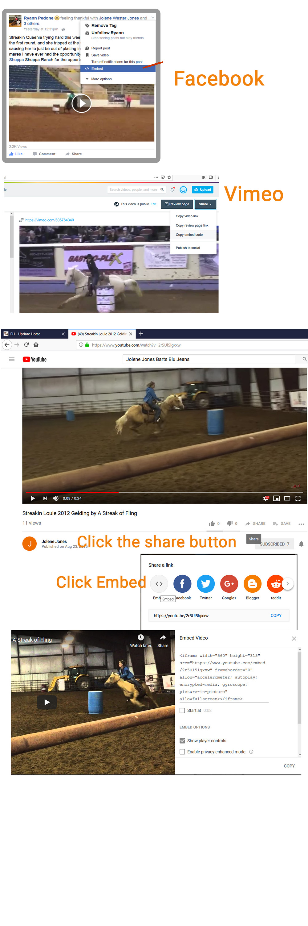 How to get the embed code for your horse profiles, horse posts and posts.