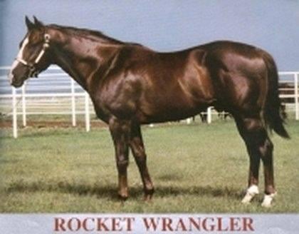ROCKET WRANGLER