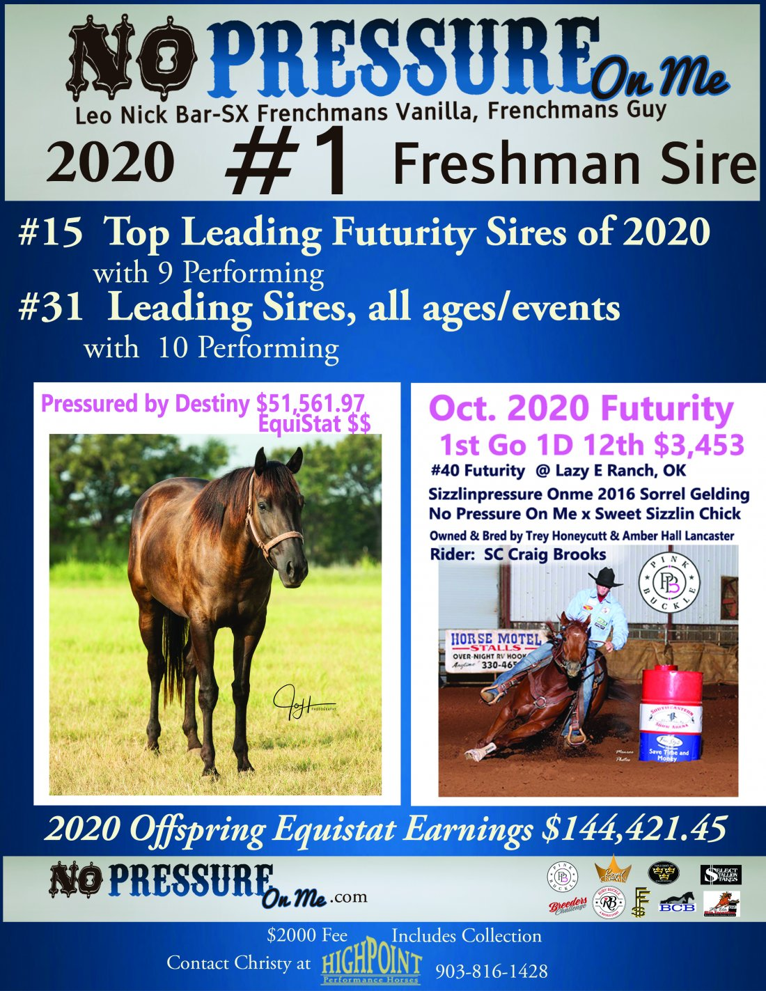 No Pressure On Me aka Rooster is name the 2020 #1 Freshman Sire with 2020 offspring earnings of $144,421,45