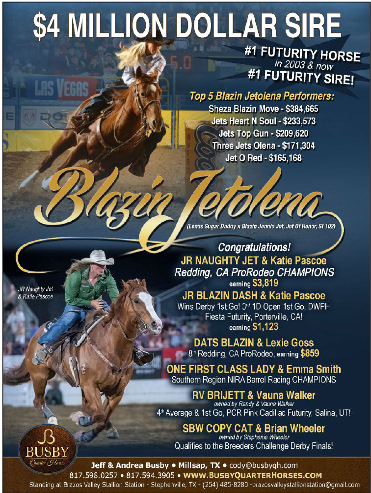 Check out the top money earners (and dam side) of $4 Million Dollar Sire Blazin Jetolena