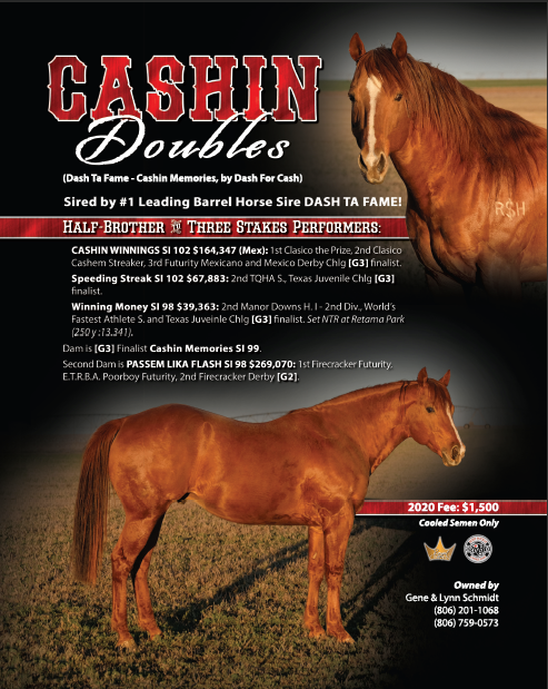 Royal Crown Stallion: Cashin Doubles