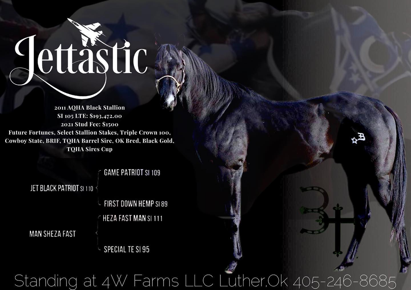 Welcome Jettastic, 2011 Black Stallion with a SI of 105, by Jet Black Patriot out of Man Sheza Fast by Heza Fast Man