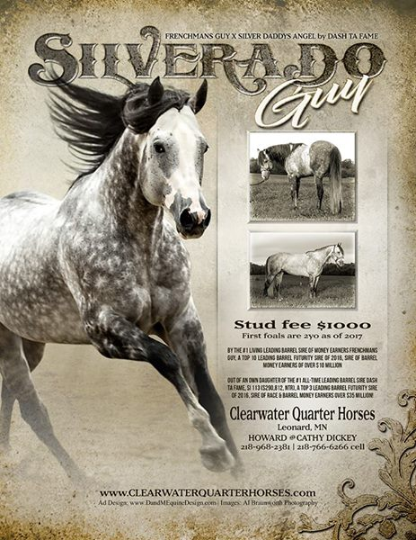 Royal Crown Stallion #38 Silverado Guy