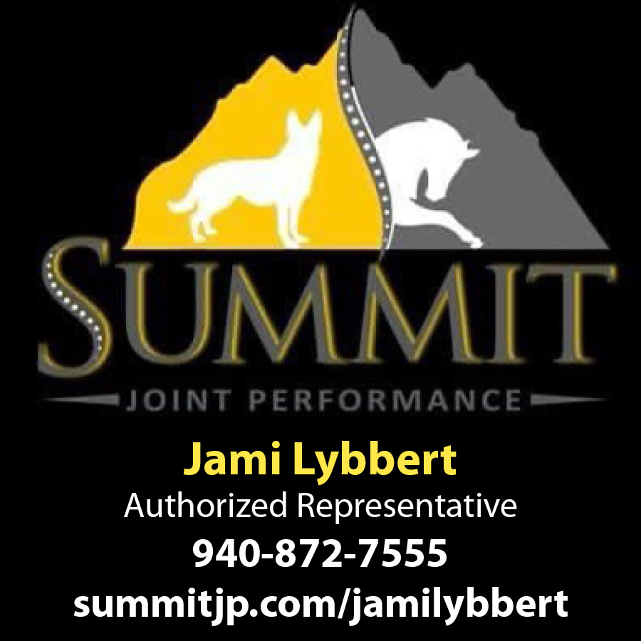 Please welcome our new sponsor Jami Lybbert, Summit Joint Performance